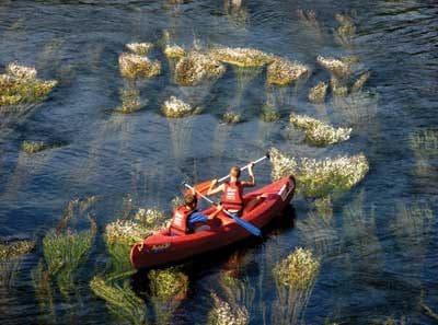Enfant en vacance faisant un parcours de canoë sur la Dordogne avec l'équipement Saga Team Dordogne
